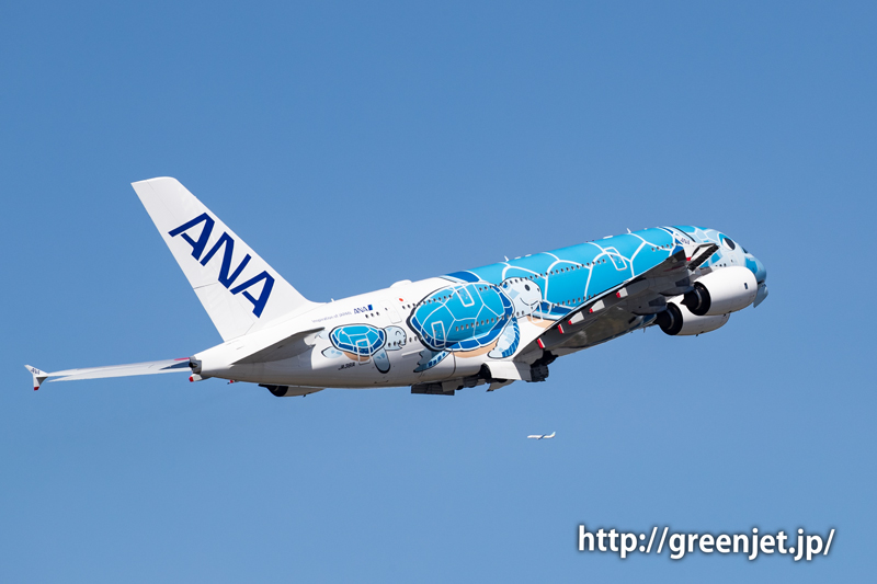 ANA フライングホヌの離陸を撮ったぞっ!