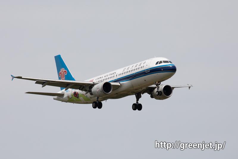 中国南方航空 A320 アウトランダーの特別塗装機