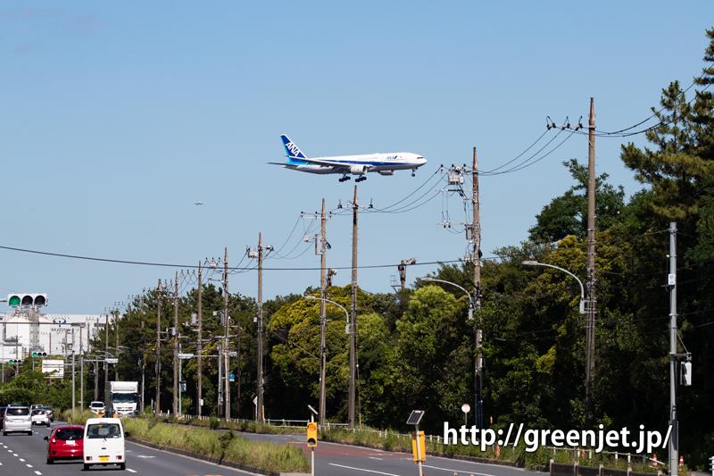城南島の路上から飛行機を狙う!~羽田です!
