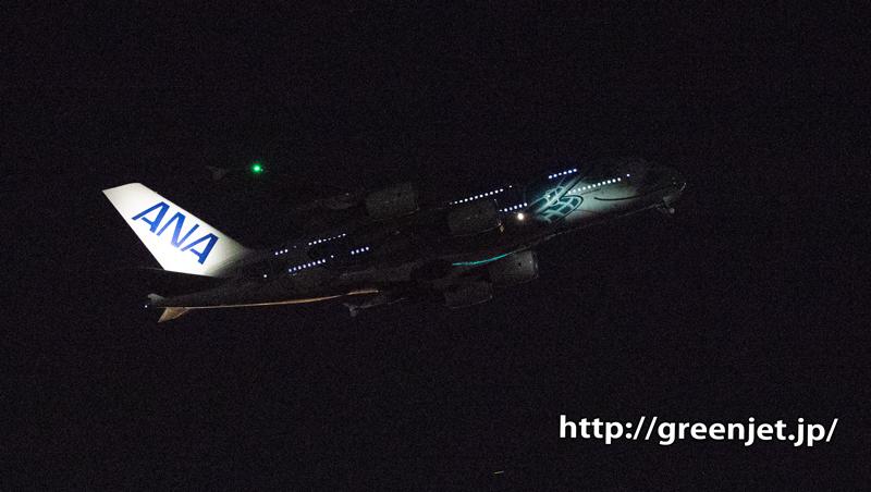 ANA フライングホヌを夜の成田で撮る!