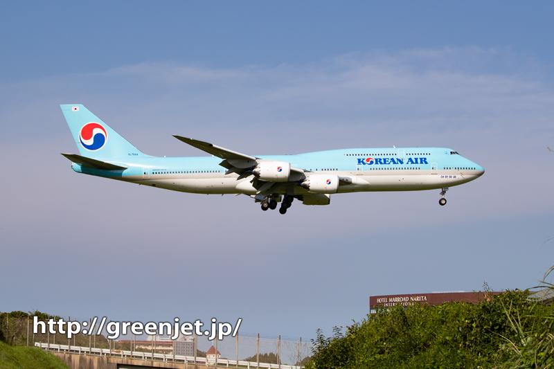 珍しくさくらの山で撮る大韓航空ジャンボ!