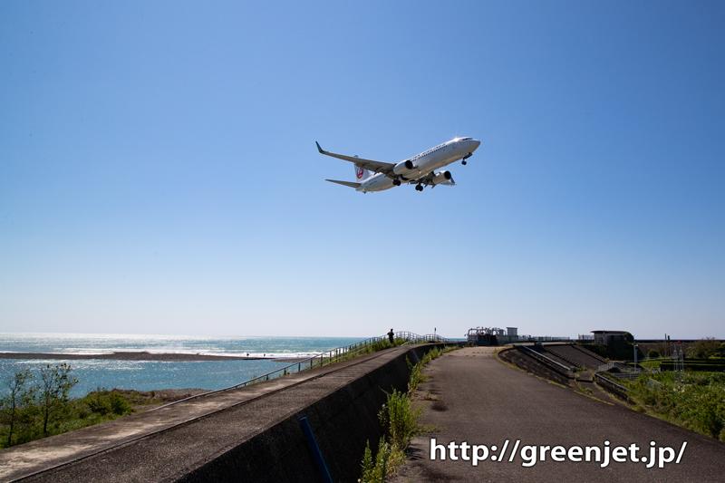 高知で撮った最高に美しい飛行機は逆光で!