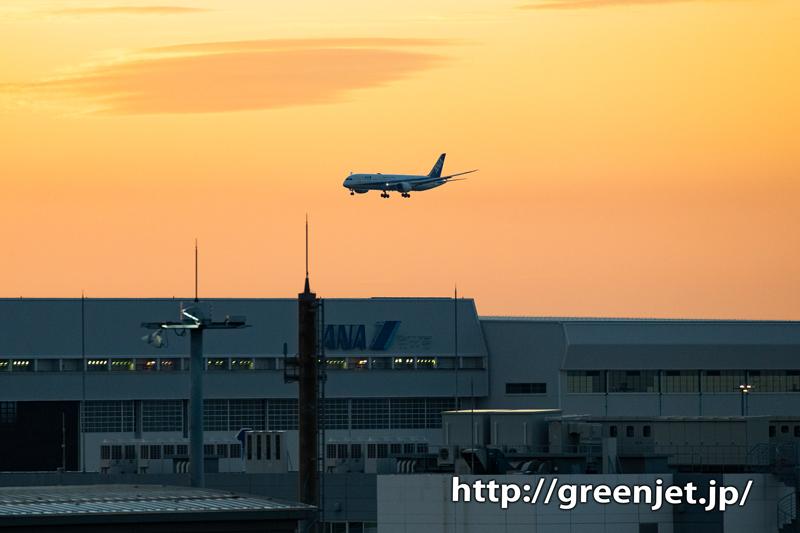 国際ターミナル駐車場から狙う朝焼けと飛行機@ANA B787