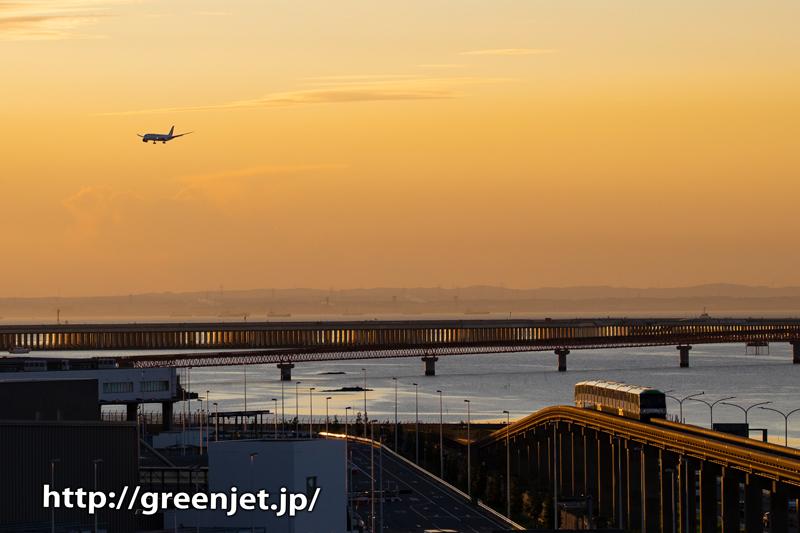 国際ターミナル駐車場から狙う朝焼けと飛行機@ANA B787@JAL B787