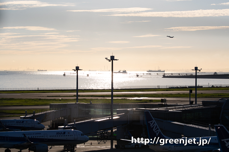早朝の美しい海の反射光とタイのジャンボ!