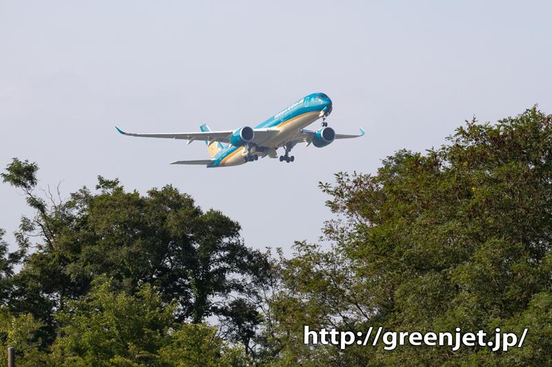 さくらの丘で再び~ベトナム航空のA350