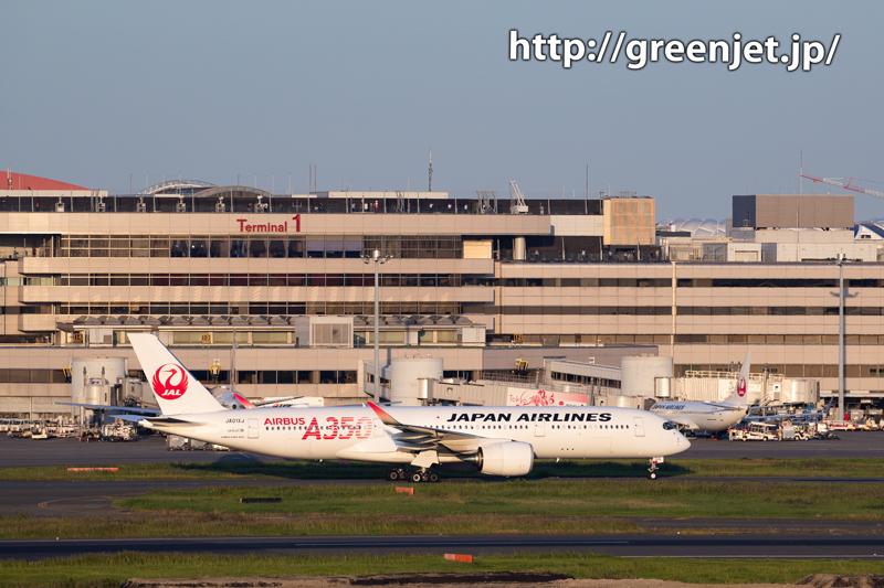 JALのA350を国際ターミナルで撮る!