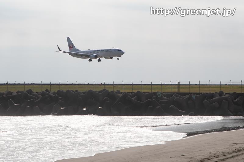 海を背景にJAL B737タッチダウン!