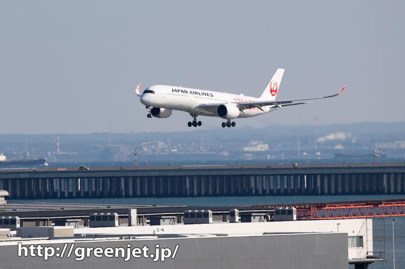 JAL A350を国際ターミナルから見る