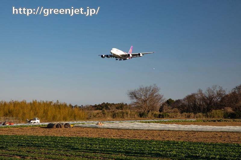 成田の畑とタイのエアバスA380~飛行機