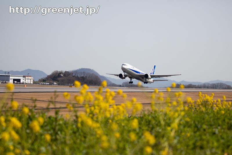菜の花と飛行機@高松~その1