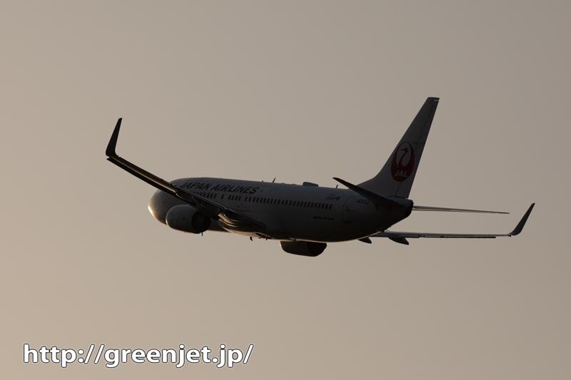 夕闇に下から強烈な太陽光!飛行機@高松