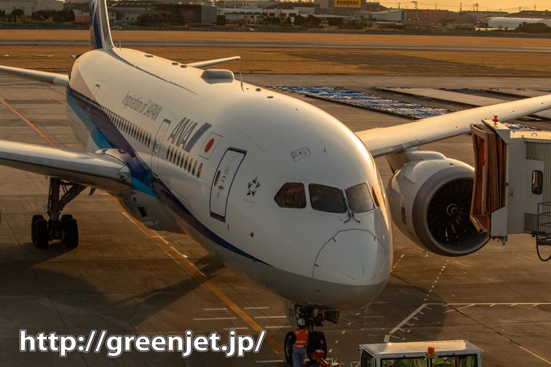 松山遠征の終演~飛行機写真
