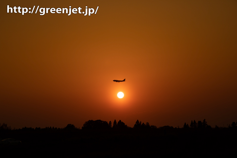 遠く成田のAランに進入する飛行機@夕焼け