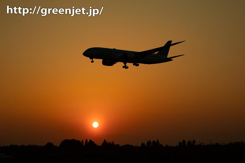 夕日に絡む美しい飛行機~正体はZIP