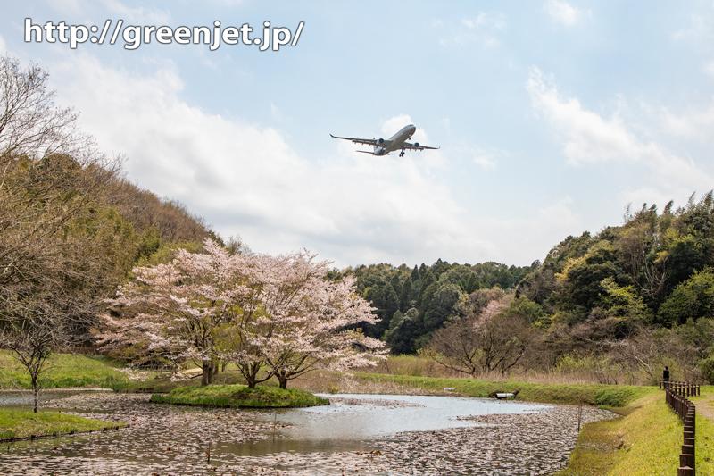 2020 成田の桜と飛行機写真は控えめⅡ