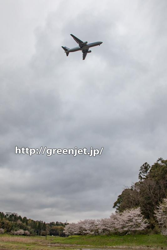 成田のBラン周辺で探した飛行機と桜Ⅱ