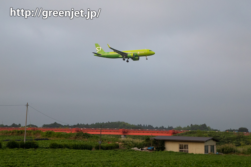 成田でallグリーンの飛行機をGet