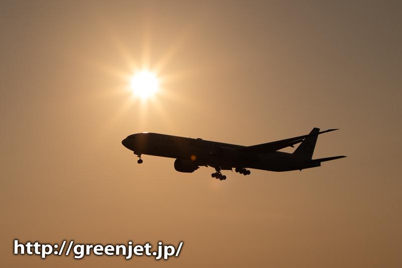 理想的な夕日と飛行機の位置関係かな。。