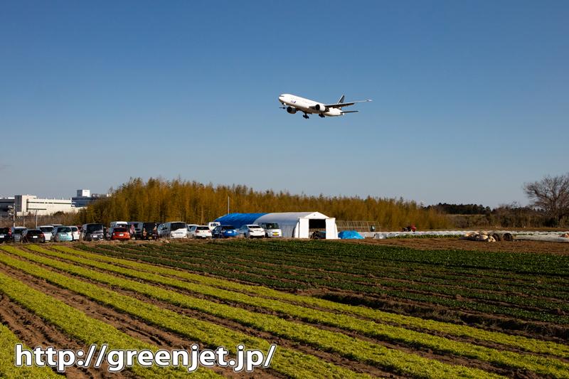 飛行機~ANAスタアラ機と緑の畑!~成田