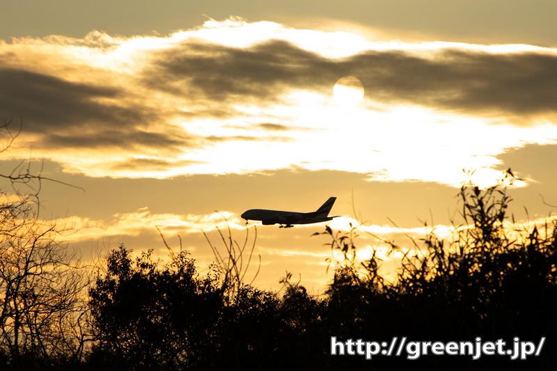 超大型機と夕陽@成田~飛行機写真楽しい!