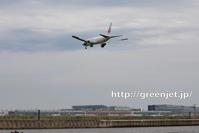 羽田 RWY16Rへ着陸する飛行機を捉える