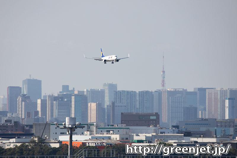 飛行機写真~羽田の着陸機に絡む東京タワー