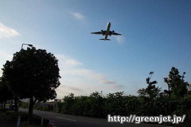 羽田付近の道端で撮る飛行機写真が超いい!