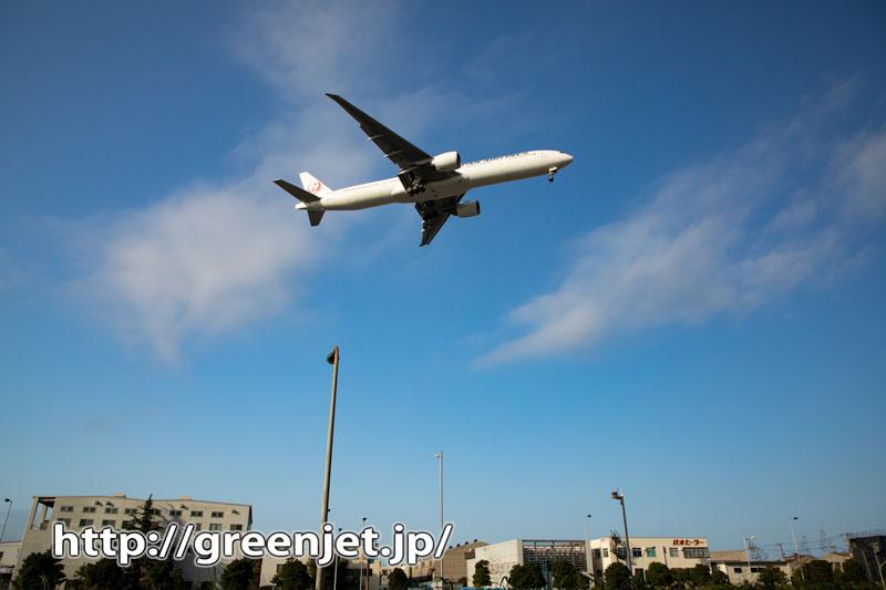 京浜島でこんな飛行機写真~最高だね@羽田