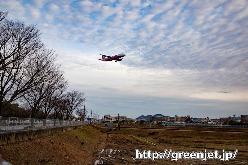 真冬の田んぼ、並木、飛行機~福岡