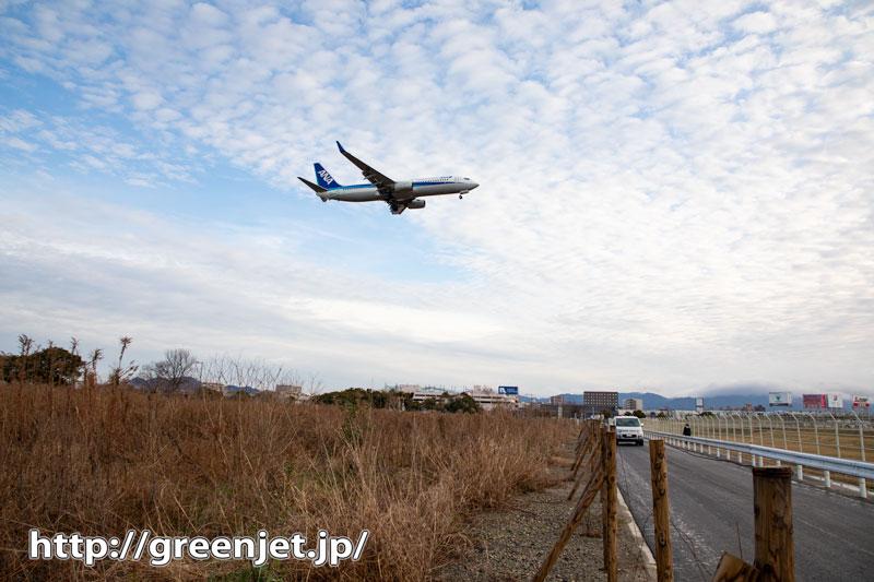 福岡の一本道上空を飛行機が横切る