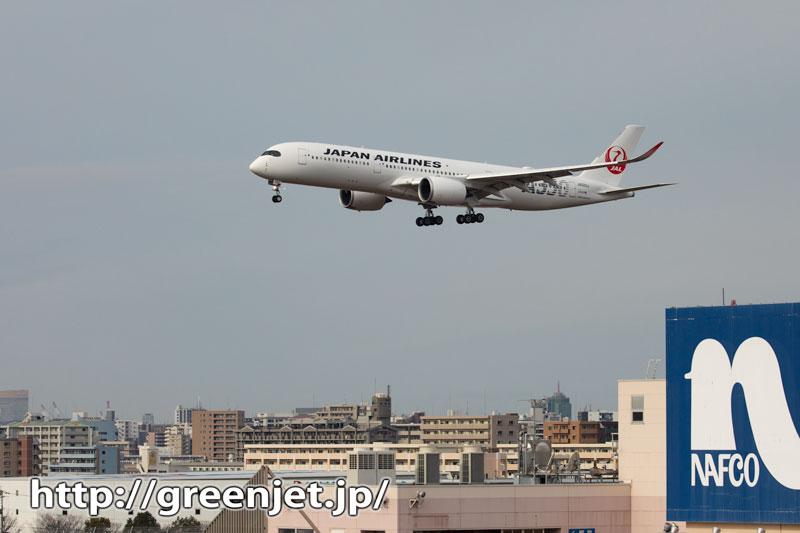 飛行機~福岡市街バックのA350は最高!