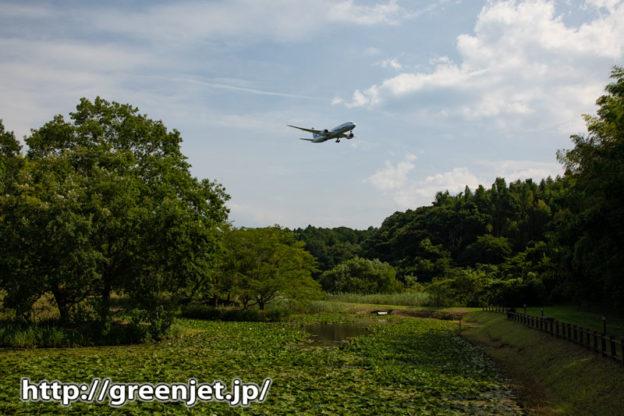 新緑の成田で撮る飛行機写真~正直憧れ..