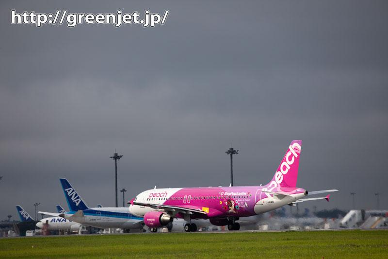 薄暗がりに浮かび上がったピンクの飛行機