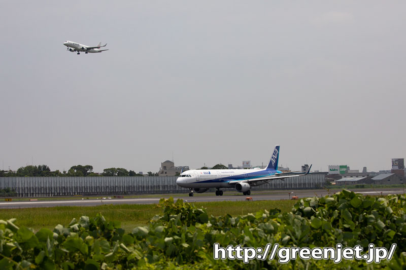 【伊丹の飛行機撮影ポイント】スカイランドHARADA