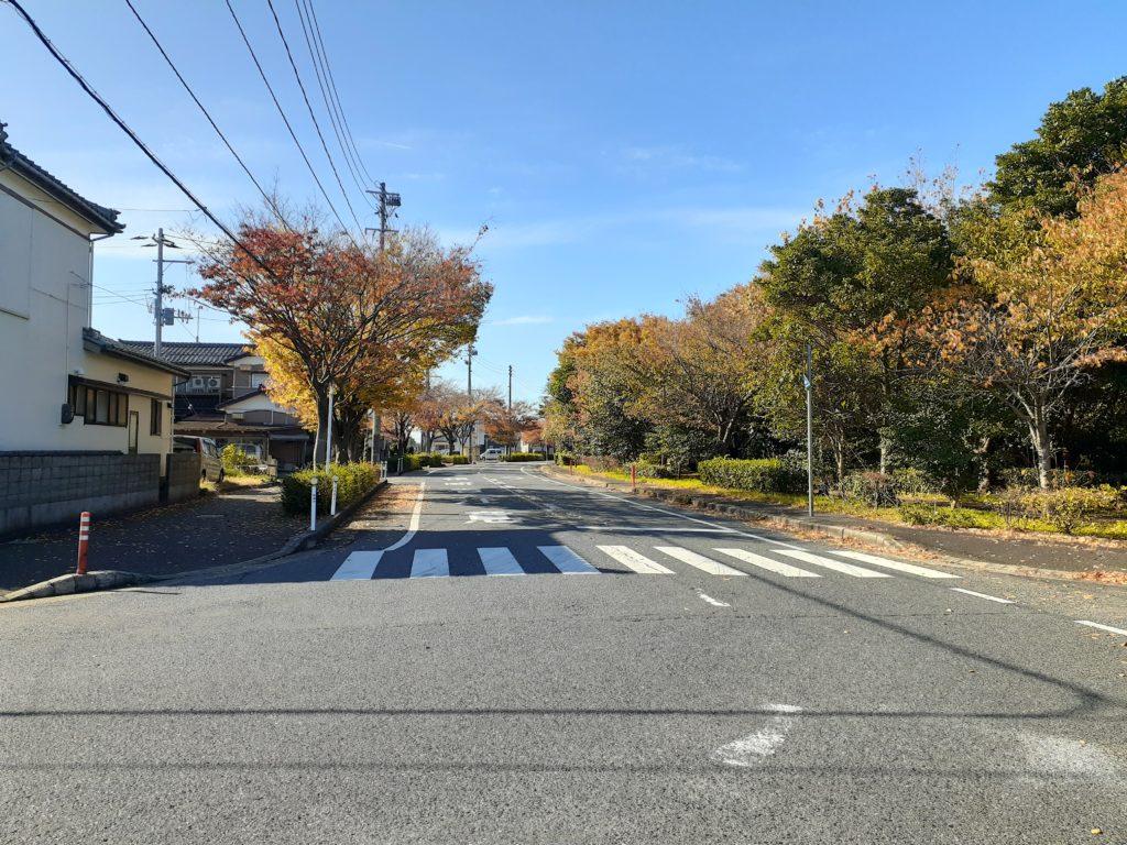 【新潟の飛行機撮影ポイント】山の下海浜公園