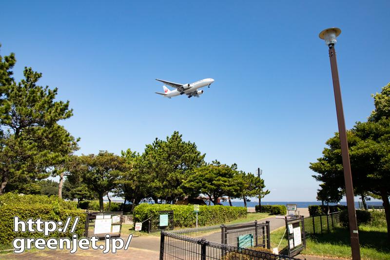 お散歩途中で撮った飛行機写真的な..