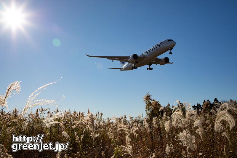 すすきと飛行機~成田でフィン