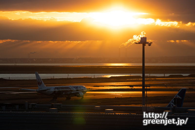 羽田で飛行機~朝焼けにミッキーJET