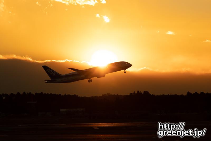 成田で飛行機~夕焼けとANA B787