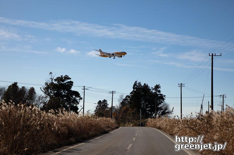 成田で飛行機~道路両はしのススキの向こうに