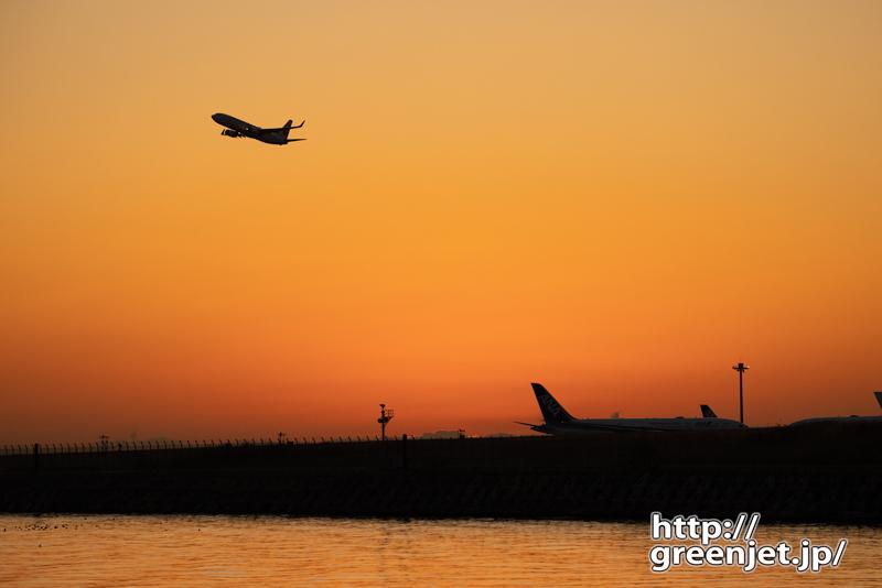 羽田で飛行機~1月31日のJL501@朝焼け