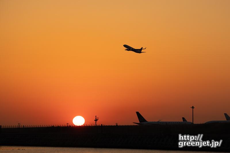 羽田で飛行機~2月7日のJL501@朝焼け