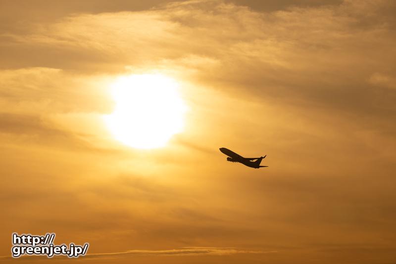 羽田で飛行機~2月27日のJL501