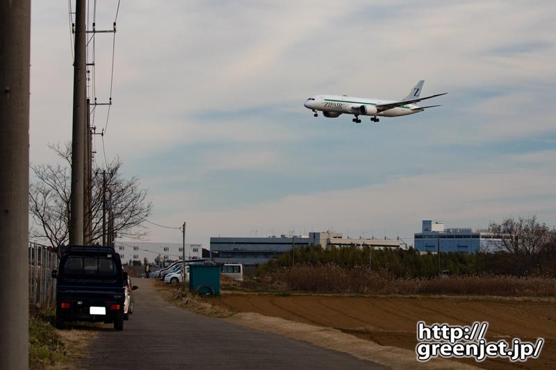 成田で飛行機~ジップエアーのB787