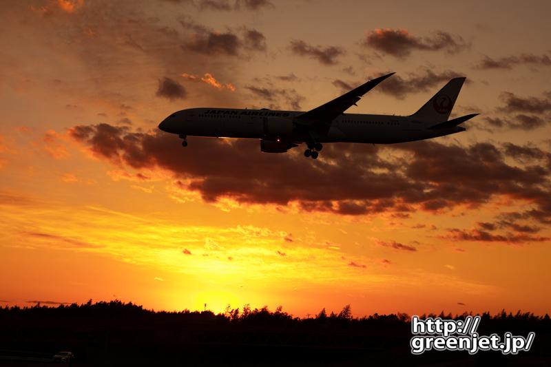成田で飛行機~美しい夕焼けとJALのB787