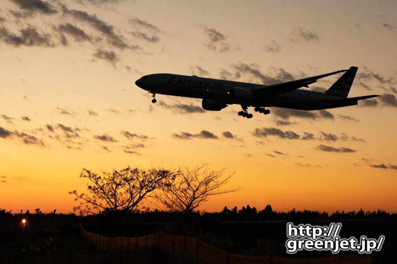 成田で飛行機~夕焼けに名を知れぬ木を絡め
