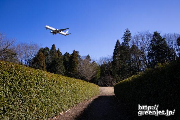 成田で飛行機~植え込みの間からB767を狙う