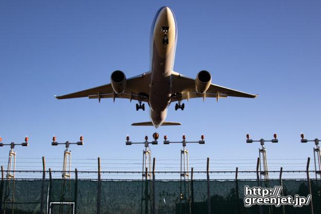 成田で飛行機~A350のお腹はダイナスティ