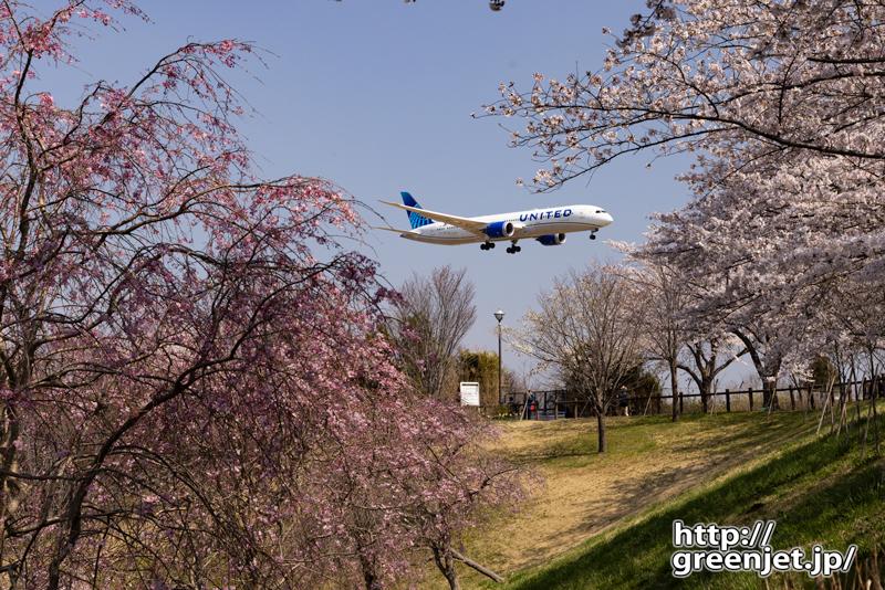 成田で飛行機~桜とニューカラーユナイテッド